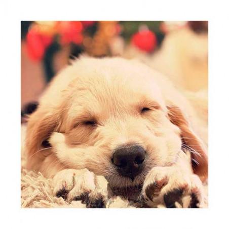 Tarjeta De Navidad Cachorrito Durmiendo