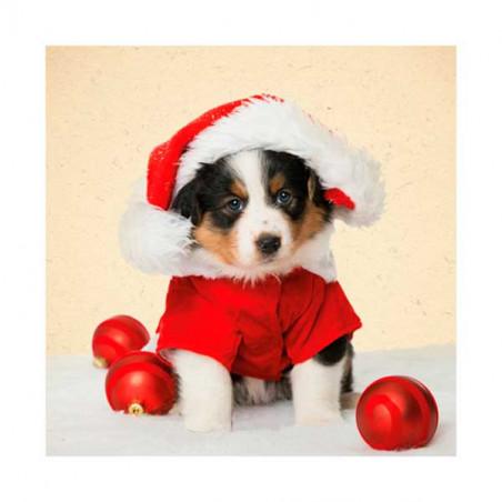 Tarjeta De Navidad Barnese Con Gorro