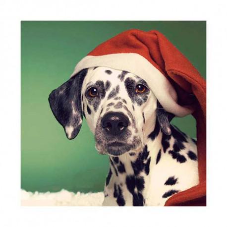 Tarjeta De Navidad Dalmata Gorro