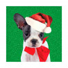 Tarjeta De Navidad Bulldog Francés Con Pajarita