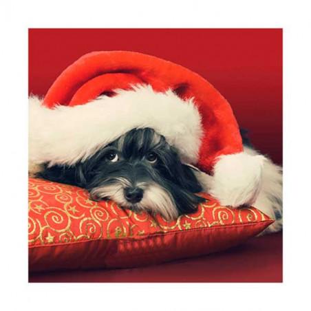 Tarjeta De Navidad Perro Con Cojín Y Sombrero