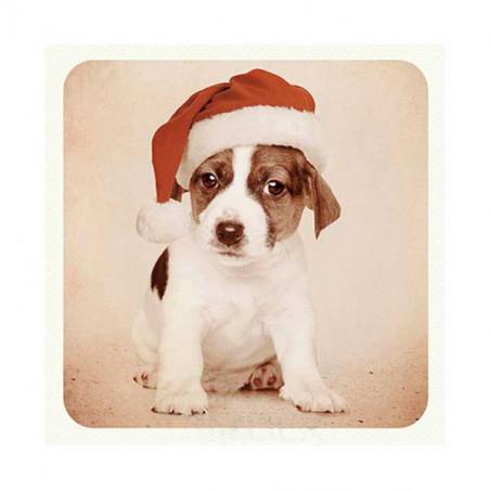 Tarjeta De Navidad Jack Russel Con Gorro