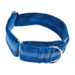 Collar Regulable Ascott Para Galgo