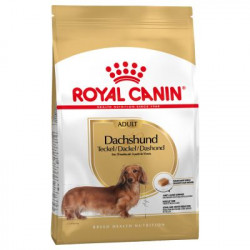Royal Canin Mini DACHSHUND Teckel