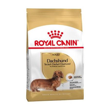 Royal Canin Mini DACHSHUND Teckel