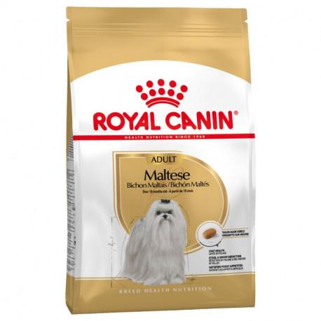 Royal Canin Bichón Maltés Adulto