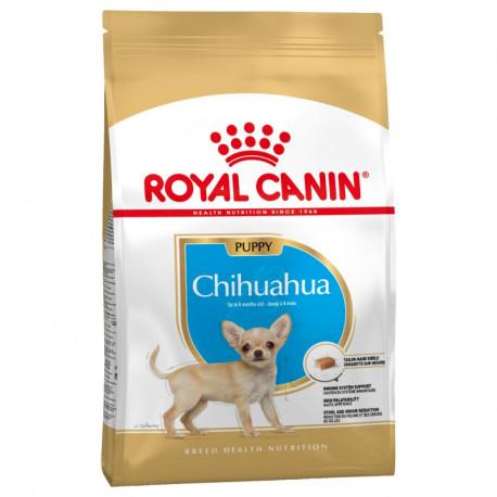 Royal Canin Chihuahua Junior Cachorro