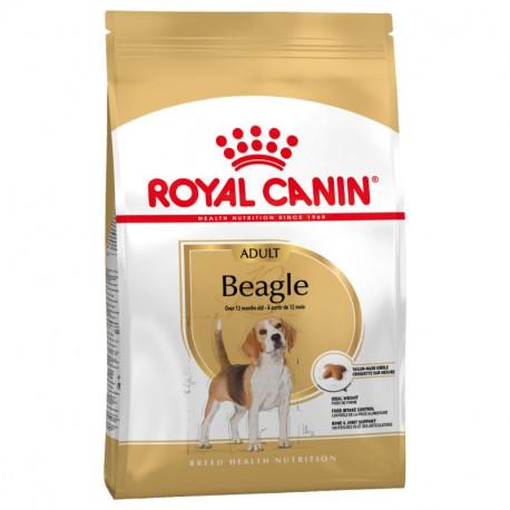 Royal Canin Beagle adulto