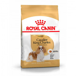Royal Canin Cavalier King Charles