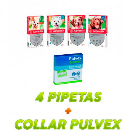 Pack Antiparasitario - Advantix + Collar Pulvex