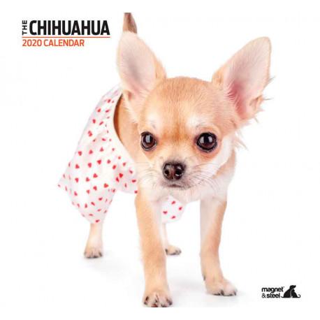 Calendario Chihuahua 2019