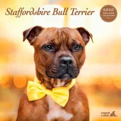 Calendario Deluxe Staffordshire Bull Terrier 2019