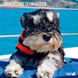 Calendario schnauzer 2020