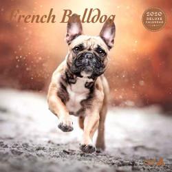 Calendario Deluxe Cachorro Labrador 2019