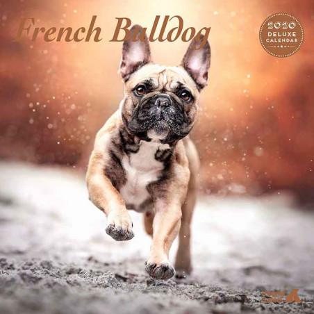 Calendario Deluxe French Bulldog 2020