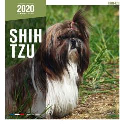 Calendario Shih Tzu 2020