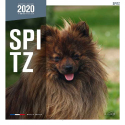 Calendario Pomerania (Spitz) 2020