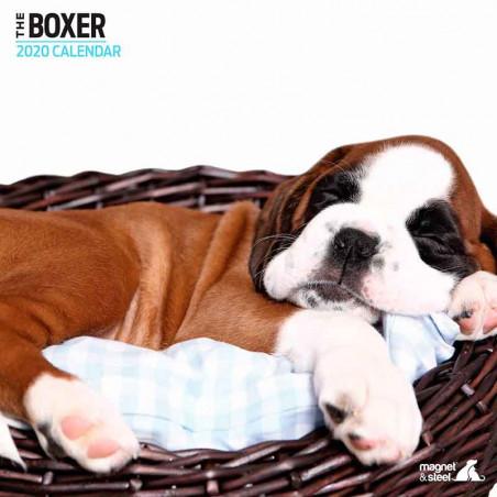 Calendario Boxer 2020