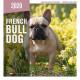 Calendario French Bulldog 2020