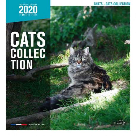 Calendario de Gatos 2020