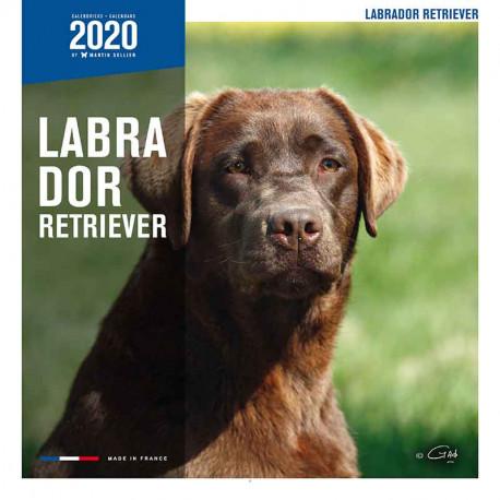 Calendario Labrador Retriever 2020