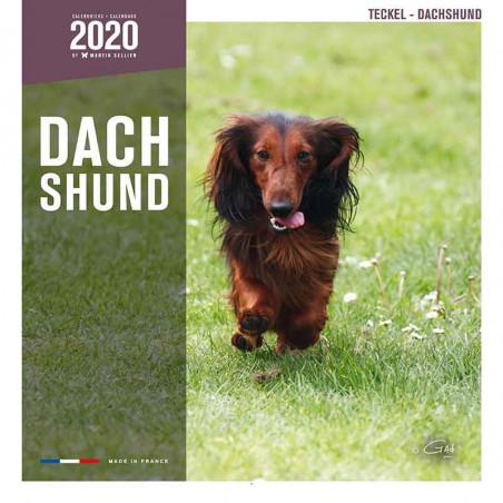 Calendario Dachshund 2020