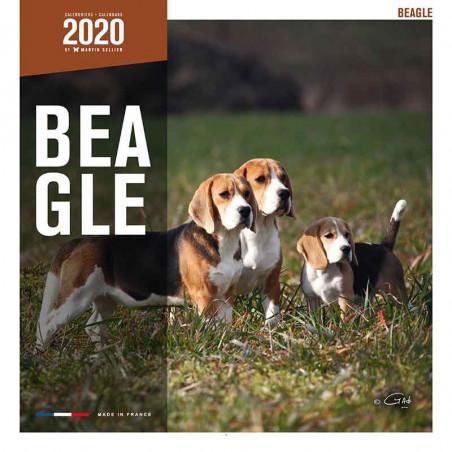 Calendario Beagle 2020