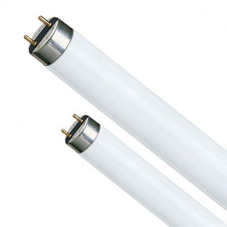 Fluorescentes Variados para Acuarios