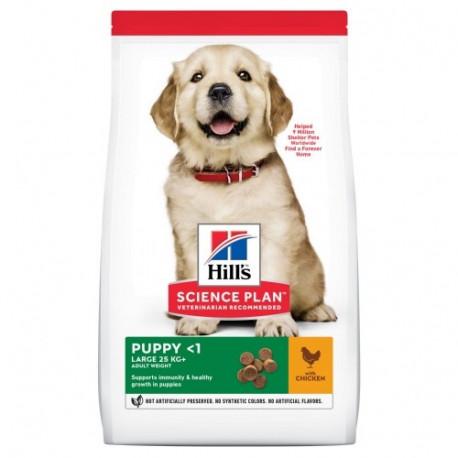 Hills Puppy Razas Grandes Pollo