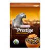 Prestige Premium Loro Parque Mix Loro Africano