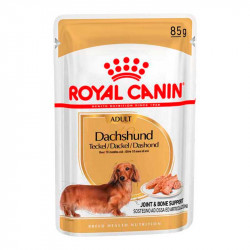 Royal Canin Dachshund Teckel Adulto Sobres