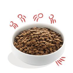 Edgar & Cooper Pollo de Granja y Salmón Senior Grain Free