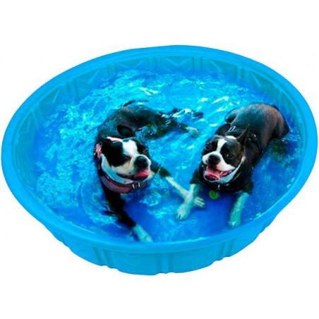 Piscina Splash Time de Plástico para Perros