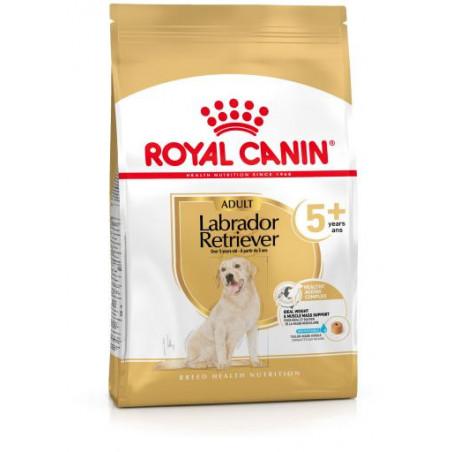 Royal Canin Labrador Retriever +5