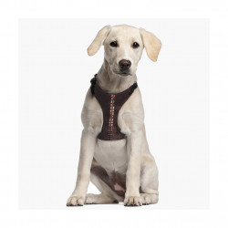 Petral Chewbacca Oficial para Perro
