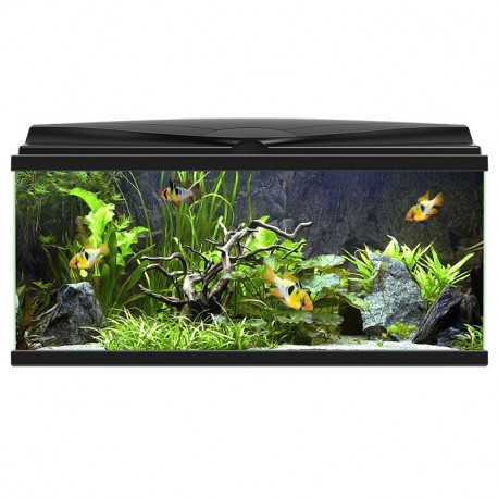 Acuario Aquarium 80 light