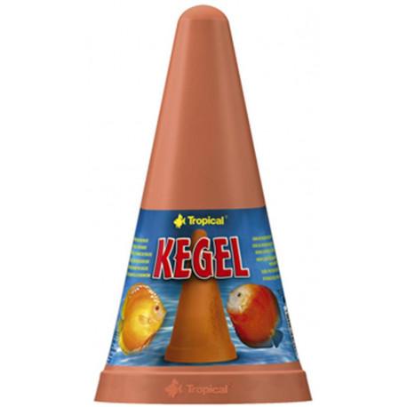 Tropical Cono Kegel Discos