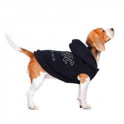 Sudadera AC/DC para Perro