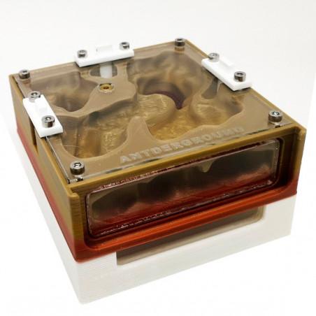 Hormiguero 3D de 10x10cm Tapa Roja