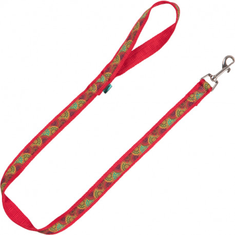 Collar Educativo Nylon Infinite World para Perros