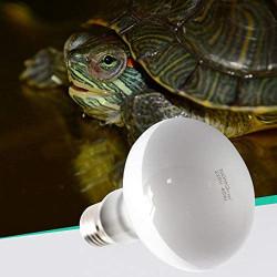 Lámpara Repti Uva 75w