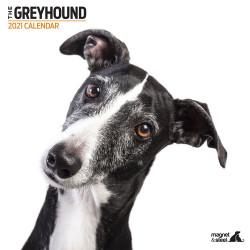 Calendario Greyhound...