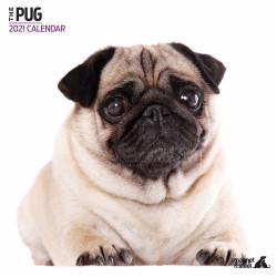 Calendario Pug (Dogillo) 2021