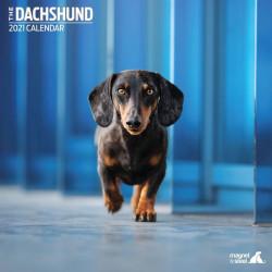 Calendario Dachshund 2021