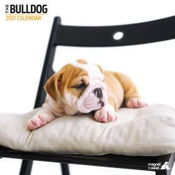 Calendario Bulldog 2021