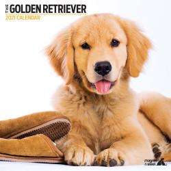 Calendario Golden Retriever...