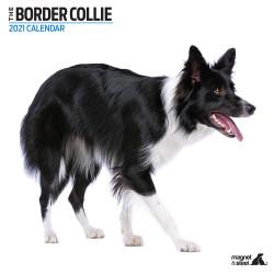 Calendario Border Collie 2021