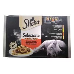 Sheba Cuisine Seleccion Carnes