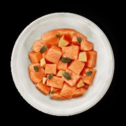 comida para gatos de salmón fresco