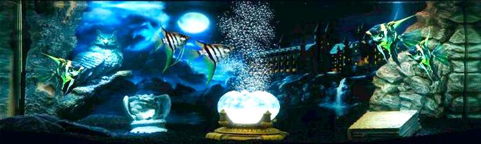 Mundo Mágico Búho Decoración Acuario